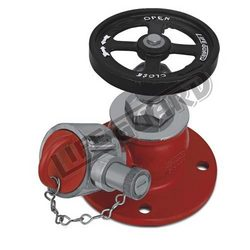 Lifeguard Stainless Steel Landing Valve