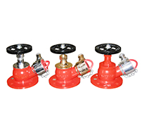 Single Outlet Landing Valve